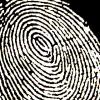 The Saudi Work Ethic: Biometric Clock Watching