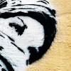 The Positive in Arab Men: A Constructive Debate