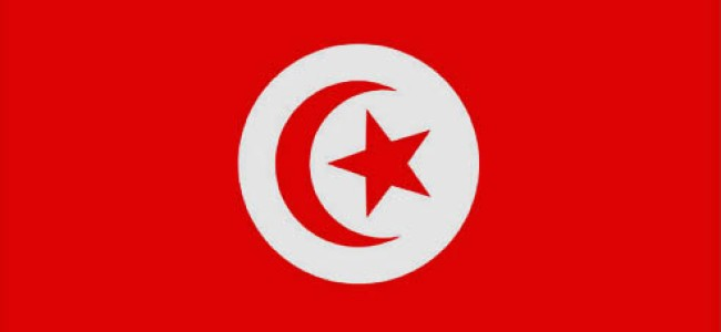 After Tunisia: Choosing the Society We Want