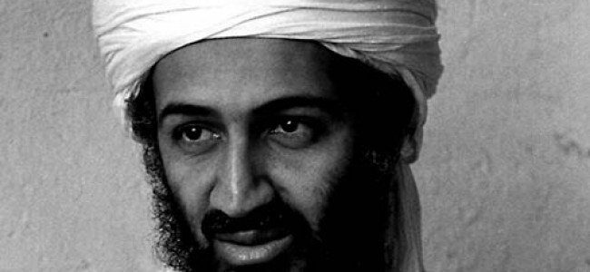 The (In)Significance of Bin Laden's Death