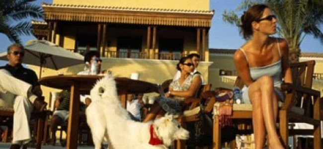 The Pros and Cons of Being an Expat in Dubai