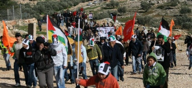 Return to Bil'in: A Small But Significant Victory