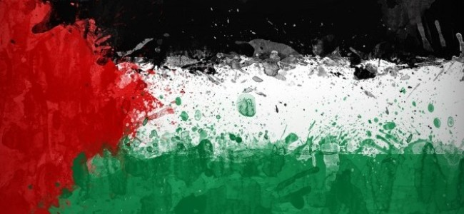 'Roar Like A Mouse': International Voices on Palestine