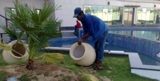 Dubai Puzzle: 'When's A Gardener Not a Gardener?