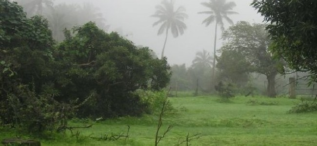A Rainy Ramadan in Salalah: Of Caffeine, Vimto and Tourists