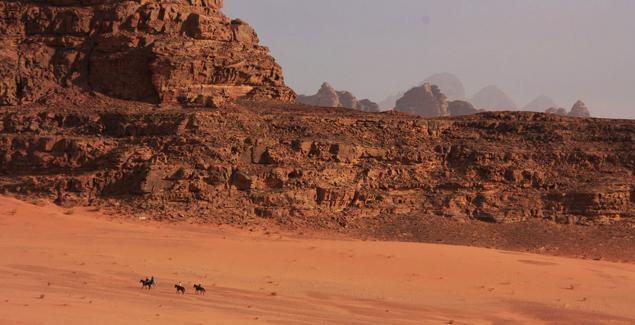 wadi-rum horses
