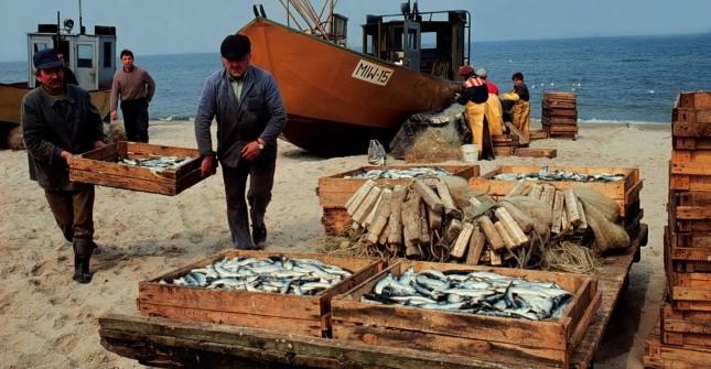 POLAND - FISHING